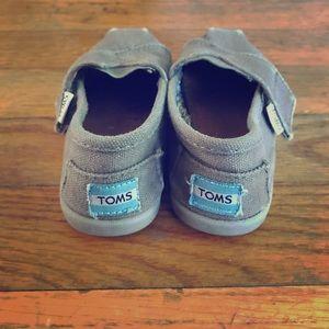 Toms Toddler Shoe grey